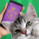 Cat Phrasebook Simulator by VooApps
