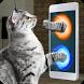 Real Portal Cat Simulator Prank