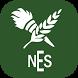 Repton New English School RNES by ArabiaCell