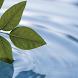 Meditation für Anfänger by Info Products