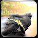 Highway Motorcycle Traffic Racer by Burak Solutions