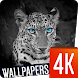 Animals Wallpapers 4k by Ultra Wallpapers