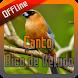 Canto Bico de Veludo Offline by takumidev