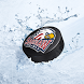 Saginaw Spirit Official App by Buzzer Apps