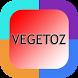 Top Lagu Vagetoz by Exfitriah