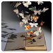 Kitap Sözleri (internetsiz)