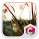 Field CLauncher Theme by CG-Live-Wallpapers