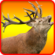 Wild Deer Target Hunt 2017 by Fun Games Developer