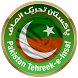PTI Party by IT Artificer