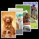 Animal Wallpapers