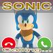 New Fake Call Sonic Prank Hedgehog Simulation by Big Stone Dev