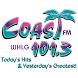 101.3 The Coast WHLG by Horizon Broadcasting Company LLC