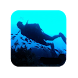 How to Scuba Dive by Luxshmi Investments