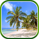 Tropical Paradise Wallpaper by BlackBird Wallpapers