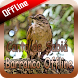 Canto de Sabiá Barranco Offline by takumidev
