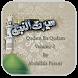 Seerat un Nabi Madani door by GladHoster