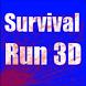 Survival Run Z 3D by CyberNinja