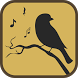 Cuckoo Bird Sounds & Ringtones by MelonDev