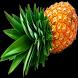 Tus Dietas by Nimbo Solutions SL