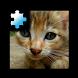 Jigsaw Puzzle: Kitten by CoCoPaPa Soft