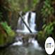 Nature Streamflow