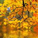 Autumn Landscape Wallpapers by lad5mirs