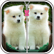 Cute Puppy Zip Screen Lock by Maxijan apps