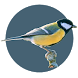 Fågelappen Online