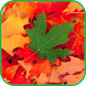 Fall Leaves Live Wallpaper 4K by Taylor Apps