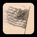 American Civil War Daily by RedBlueThing