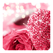 Pink Love Diamond Rose by Launcher phone theme