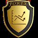 Форекс (forex) PRO by civunko