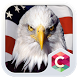 Bald Eagle C Launcher Theme by CG-Live-Wallpapers