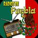Radios de Puebla by Radio Live Dev