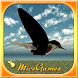 Jumpy Bird 3D by Micegames