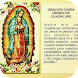 Novena Guadalupana by Jacm Apps