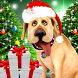 Dog Advent Calendar for Xmas by Kaufcom Games Apps Widgets