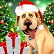 Dog Advent Calendar for Xmas by Kaufcom Games Apps Widgets