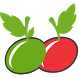 Chikooz - The Fresh Express by DMS Infotech & FinSolutions Pvt. Ltd.