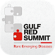 RED Summit 2015 by Shankar.MedtrixHealthcare.com