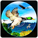Birds Hunter 2017 by GunFire Games