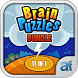 Brain Puzzles Bundle 11 in 1 by Agile Fusion Studios