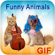 GIF Funny Animal Collection by GIF Apps Store