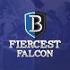 Fiercest Falcon