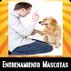 Entrenamiento de mascotas by MejorApp
