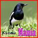 Master Kicau by PJ olala