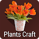 Plants DIY Pots and Crafts by RaccoonFinger