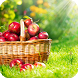 Fruit Live Wallpaper by GlobalWallpapers