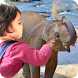 Kids wildlife zoo - Full vers. by Tennikus Media