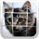 Slide The Picture (Puzzle) by Mobile Magic Games